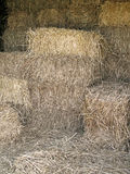Stacked Bales of Straw Royalty Free Stock Photography