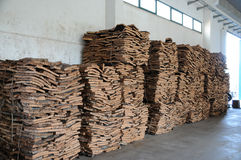Stacked bark of cork oak Stock Image