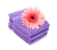 Stacked bathroom towels Royalty Free Stock Photography
