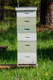 Stacked Beekeeping Boxes Royalty Free Stock Images