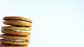 Stacked biscuits Stock Photography