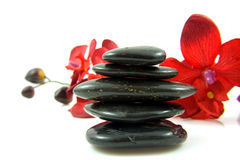 Stacked black spa stones with silk orchid Stock Photos