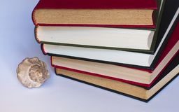 Stacked books and seashell stock images