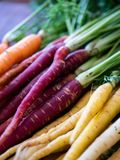 Stacked bunch of rainbow carrots in soft focus and separated by color stock photography