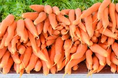 Stacked bunched of fresh raw carrots. Stacked bunched of fresh raw orange carrots on a farmers market in a close up full frame view royalty free stock image