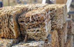 Stacked coquina  blocks. Rectangular blocks of porous limestone stacked in a pile Stock Photos