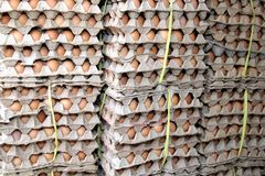 Stacked egg cartons for Royalty Free Stock Photography