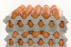 Stacked of eggs. In paper trays package isolated on white background royalty free stock photos