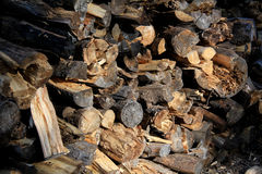 Stacked Fire Wood Stock Image