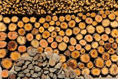 Stacked of firewood Stock Photography