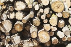 Stacked firewood chopped and placed in a pile stock images