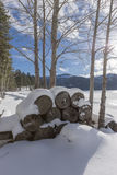 Stacked firewood on a cold winter day. Royalty Free Stock Photography