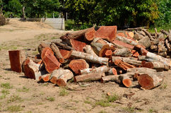 Stacked firewood. Royalty Free Stock Photography