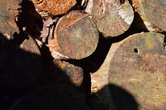 Stacked firewood outside Royalty Free Stock Photos