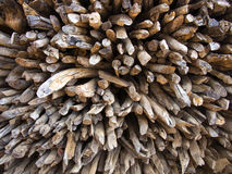 Stacked firewood. The pile of firewood were taken close up and fill the whole picture. The picture can be use as  wall paper or background image as the beauty Royalty Free Stock Images