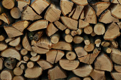 Stacked firewood Stock Photo