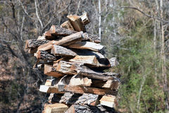 Stacked Fresh Cut Firewood Stock Photography