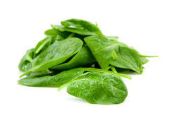 Stacked fresh spinach Stock Photography