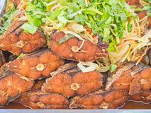 Stacked of fried fish Stock Images