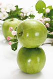 Stacked green apples, and apple blossom Stock Photo