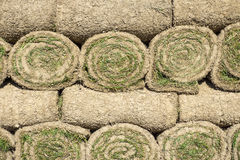 The stacked green lawn rolls Royalty Free Stock Photography