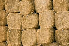 Stacked Hay Stock Photography