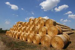 Stacked hay bales Stock Photos