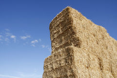 Stacked hay bales Stock Images