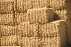 Stacked Hay Bales Royalty Free Stock Photo