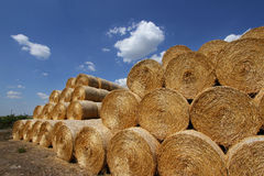 Stacked hay bales Stock Photography