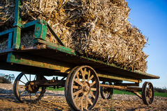 Stacked hay bales on antique amish wagon Stock Image