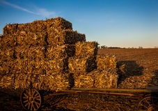 Stacked hay bales on antique amish wagon Stock Images