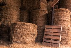 Stacked Hay Bales in a barn Stock Photos