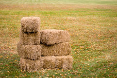 Stacked Hay Bales Stock Photo