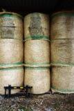 Stacked hay bales. Golden hay bales stacked like big wall royalty free stock photo