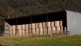 Stacked hay bales in shed. A tin farm shed stacked with rolls of hay Stock Photo