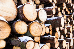 A stacked heap of chopped logs from pine retain their bark and s Royalty Free Stock Images