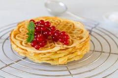 Stacked homemade waffles Royalty Free Stock Image