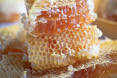 Stacked honey comb Royalty Free Stock Photography
