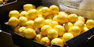 Stacked lemons Royalty Free Stock Image
