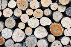 Stacked log background Royalty Free Stock Images