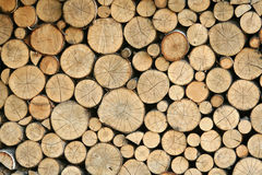Stacked logs. Pile of carefully Stacked logs Stock Photo