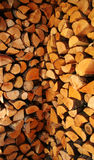 Stacked logs. Pile of logs Royalty Free Stock Photo
