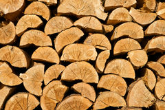 Free Stacked Logs Background Stock Photos - 22931473
