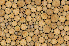 Stacked Logs Background Stock Images