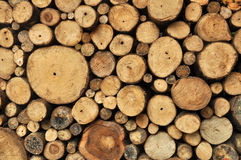 Stacked logs background Royalty Free Stock Images