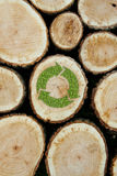 Stacked Logs Background with green plant recycle Stock Image