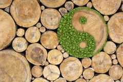 Stacked Logs Background with ying yang Stock Photography