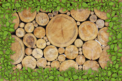 Stacked Logs Background with ying yang Royalty Free Stock Image