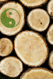 Stacked Logs Background with ying yang symbol Royalty Free Stock Images